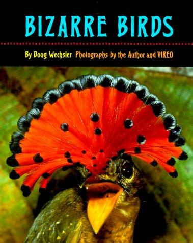 Download Bizarre Birds