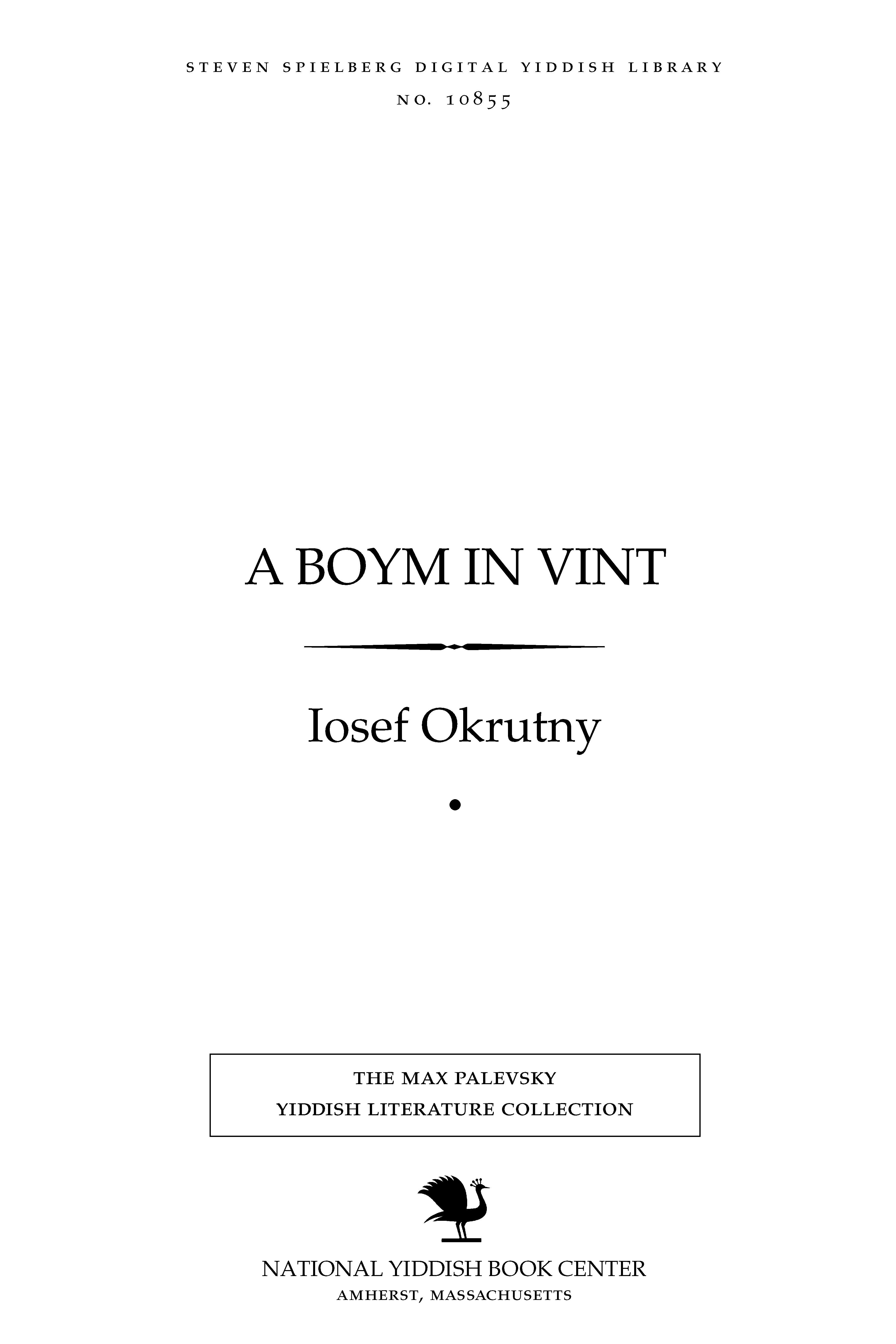 Cover of: A boym in ṿinṭ