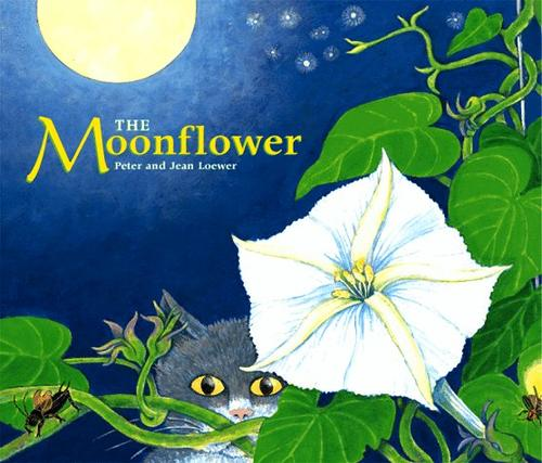 The Moonflower by Jean Loewer